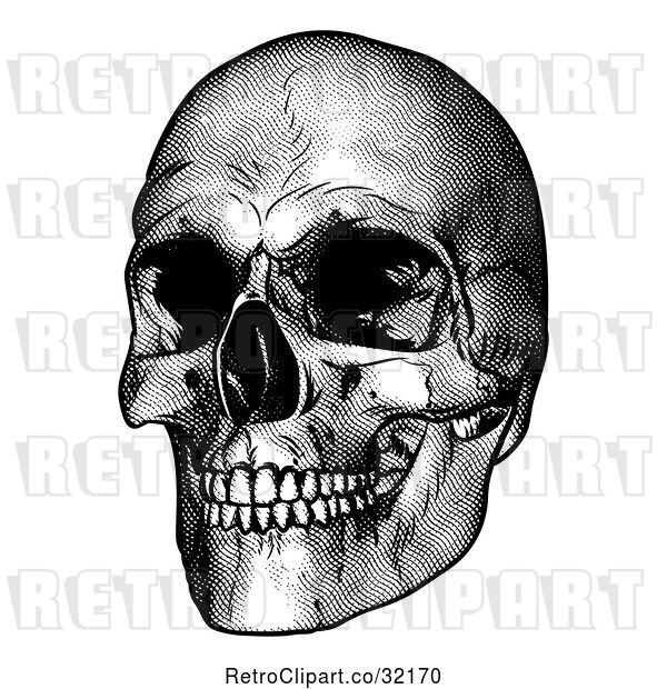 Vector Clip Art of Retro Engraved Human Skull