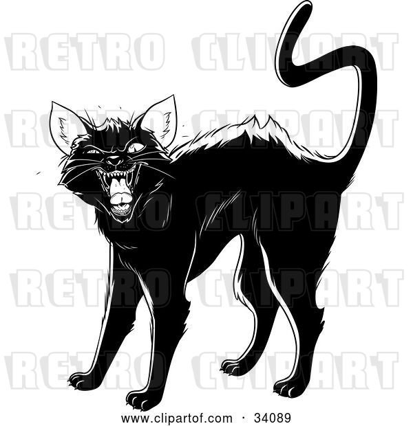 Vector Clip Art of Retro Evil Black Cat Arching Its Back, Twitching Its Tail and Hissing