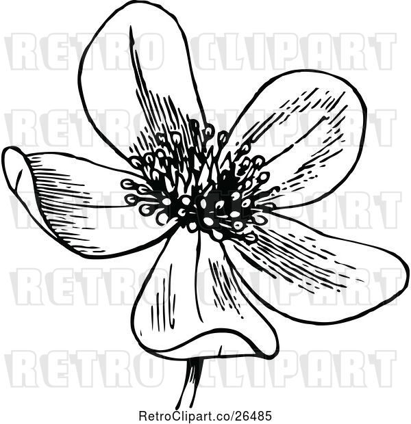 Vector Clip Art of Retro Flower