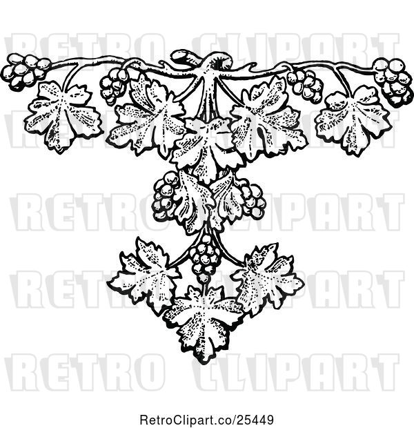 Vector Clip Art of Retro Grape Vine Design