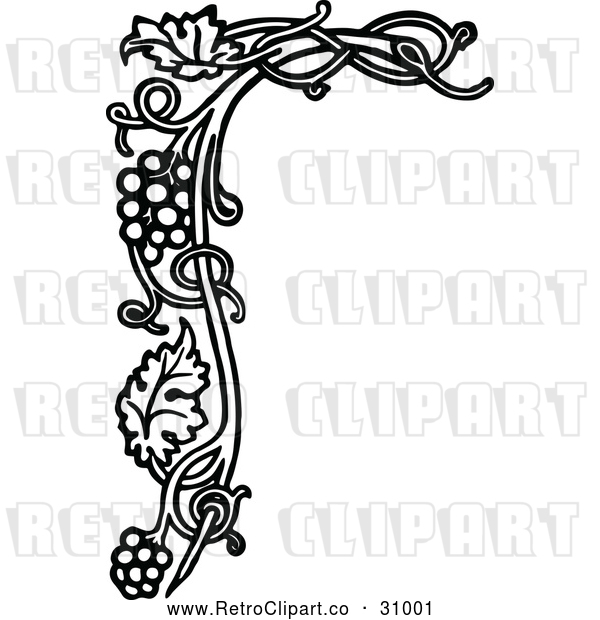 Vector Clip Art of Retro Grape Vine Floral Page Border
