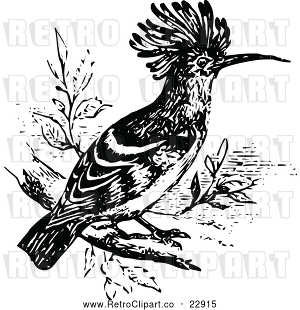 Vector Clip Art of Retro Hoopoe Bird
