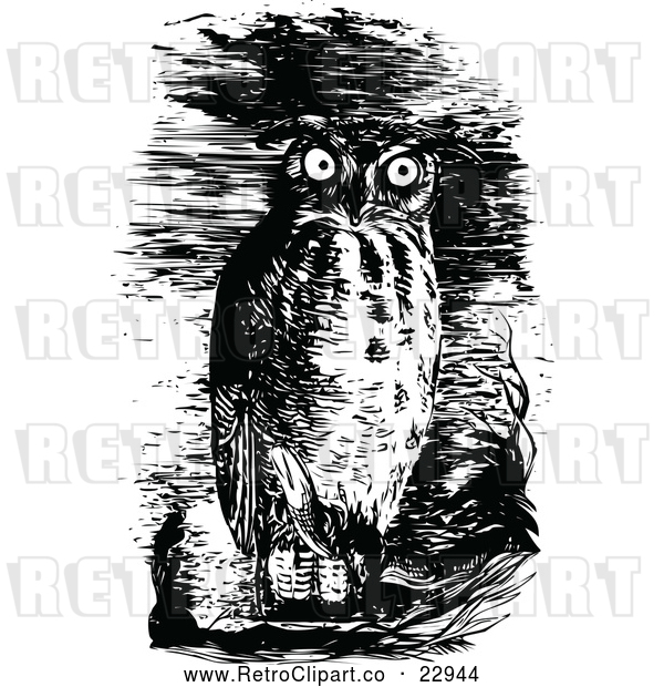 : Vector Clip Art of Retro Horned Owl in the Night