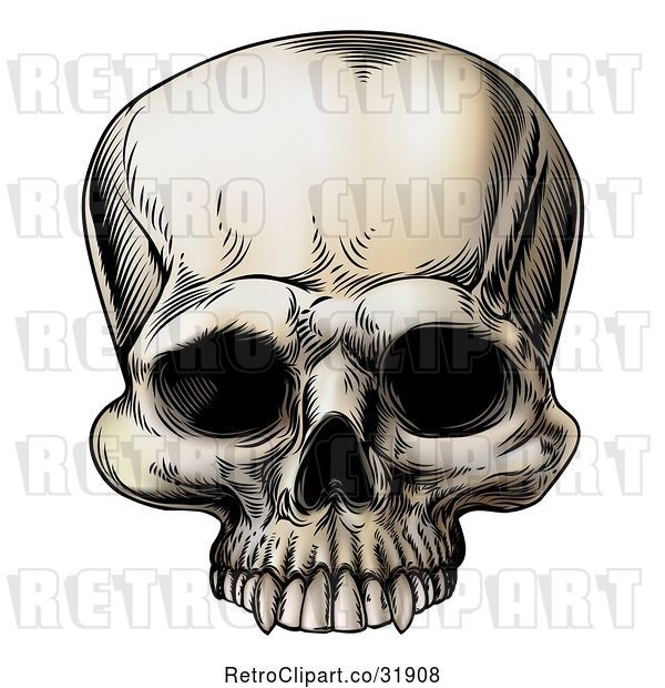 Vector Clip Art of Retro Human Skull