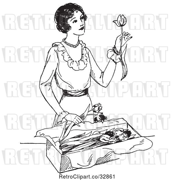 Vector Clip Art of Retro Lady Opening a Box of Tulips