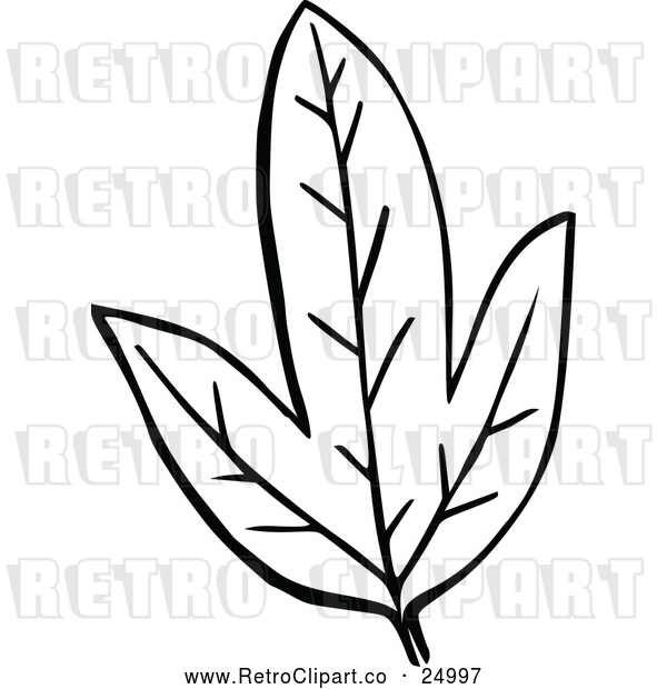: Vector Clip Art of Retro Leaf