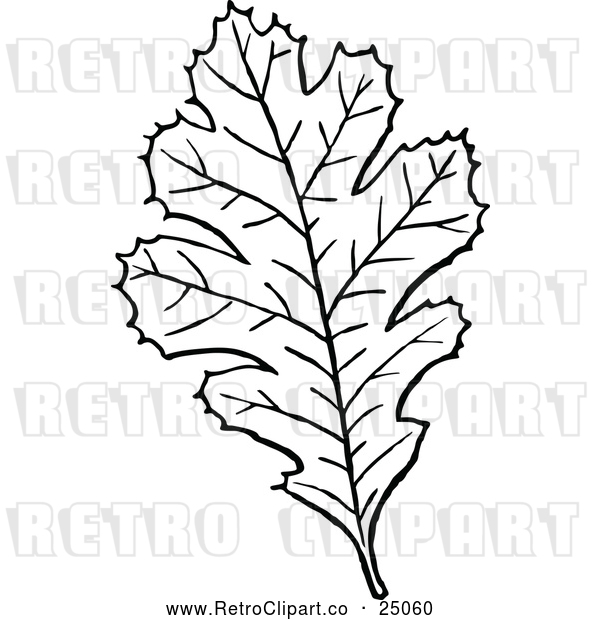 Vector Clip Art of Retro Leaf