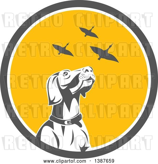 Vector Clip Art of Retro Pointer Hunting Dog Looking up at Flying Geese in a Gray White and Yellow Circle