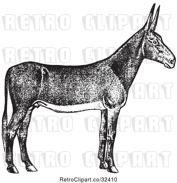 Vector Clip Art of Retro Poitou Donkey Ass in