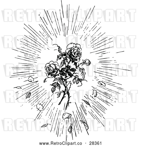 Vector Clip Art of Retro Rose Burst