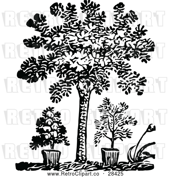 : Vector Clip Art of Retro Tree and Potted Plants