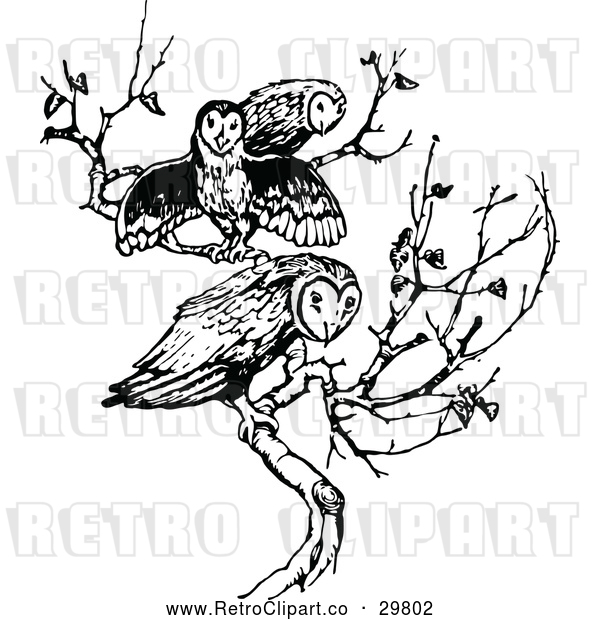 Vector Clip Art of Retro Trio of Owls on a Branch