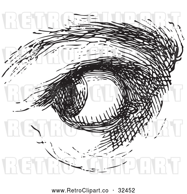Vector Clip Art of Retro Watchful Eye in Black and White