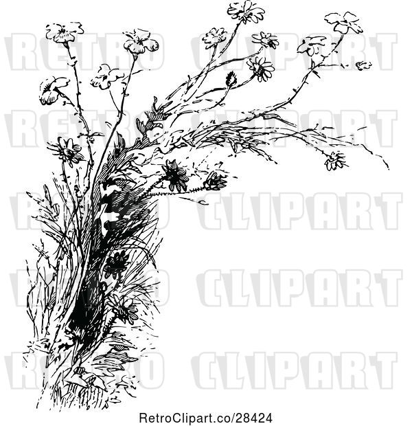 Vector Clip Art of Retro Wildflowers