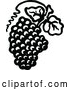Clipart of a Retro Grapes with Leaves by Prawny Vintage