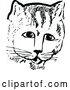 Vector Clip Art of Retro Cat Face by Prawny Vintage