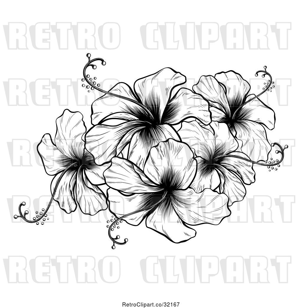 Vector Clip Art Of Retro Engraved Or Woodcut Hibiscus Flower Design