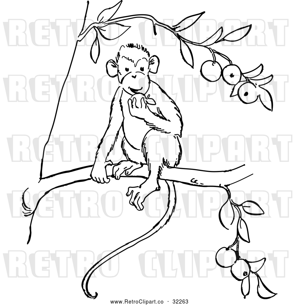 monkey line drawing