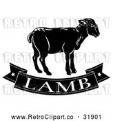 Vector Clip Art of a Retro Black and White Lamb Banner by AtStockIllustration