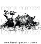 Vector Clip Art of a Retro Pig Soaking in Mud by Prawny Vintage