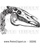 Vector Clip Art of Horse Head in Black and White by Picsburg