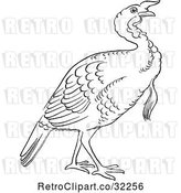 Vector Clip Art of Retro Cartoon Gobbler Thanksgiving Turkey Bird Line Drawing by Picsburg