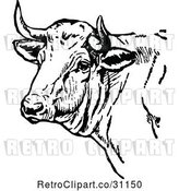 Vector Clip Art of Retro Cow Head by Prawny Vintage