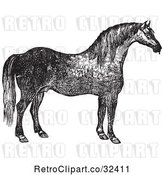 Vector Clip Art of Retro Engraved Horse in by Picsburg