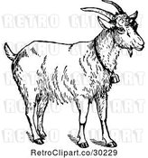 Vector Clip Art of Retro Goat Wearing a Bell by Prawny Vintage