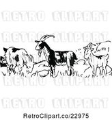 Vector Clip Art of Retro Goats in a Field by Prawny Vintage