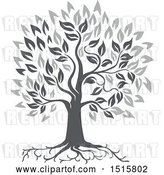 Vector Clip Art of Retro Grayscale Oak Tree with Roots and Leaves by Patrimonio