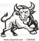 Vector Clip Art of Retro Grayscale Woodcut Charging Angry Bull by Patrimonio