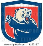 Vector Clip Art of Retro Grizzly Bear Roaring and Slashing with His Paw in a Red White and Blue Shield by Patrimonio