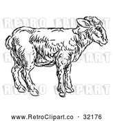 Vector Clip Art of Retro Lamb by AtStockIllustration