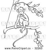 Vector Clip Art of Retro Monkey Eating Fruit in a Tree Line Drawing by Picsburg