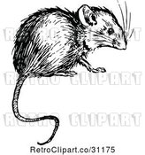 Vector Clip Art of Retro Mouse by Prawny Vintage
