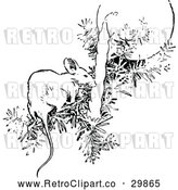 Vector Clip Art of Retro Mouse on a Christmas Tree Branch by Prawny Vintage
