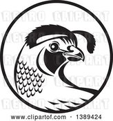 Vector Clip Art of Retro Quail Bird in a Circle by Patrimonio