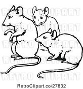 Vector Clip Art of Retro Trio of Mice by Prawny Vintage