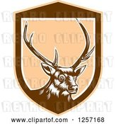 Vector Clip Art of Retro Woodcut Deer in a Brown and Tan Shield by Patrimonio
