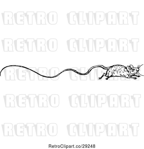 Vector Clip Art of Retro Border of a Long Tailed Rat