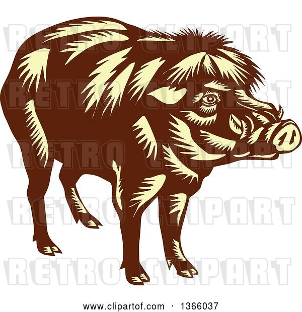 Vector Clip Art of Retro Woodcut Brown and Yellow Philippine Warty Pig